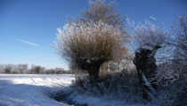Winter in Ampen